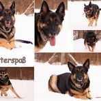 Winterspaß - Collage
