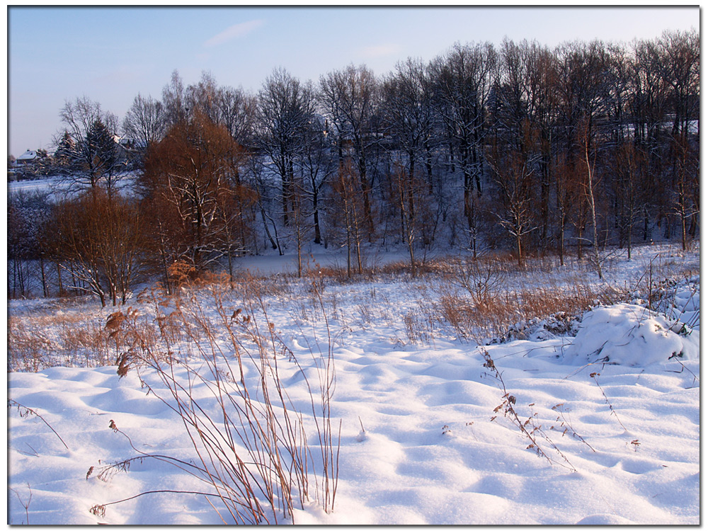 Winterspaziergang (4)
