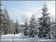 Winterspaziergang...