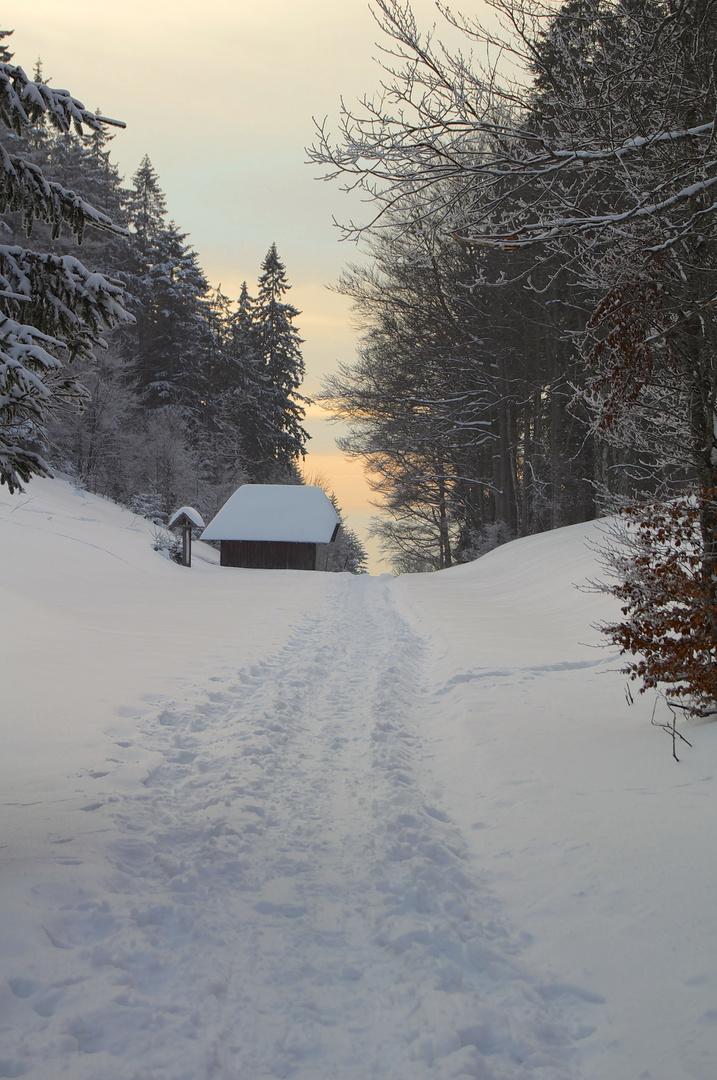 Winterspaziergang am Abend