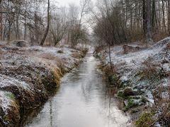 Winterspaziergang am Rodebach