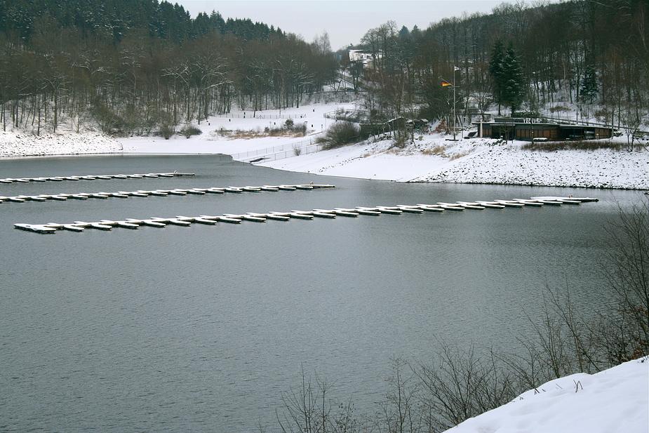 Winterspaziergang am See III
