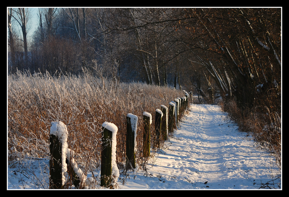 Winterspaziergang an der Geinegge