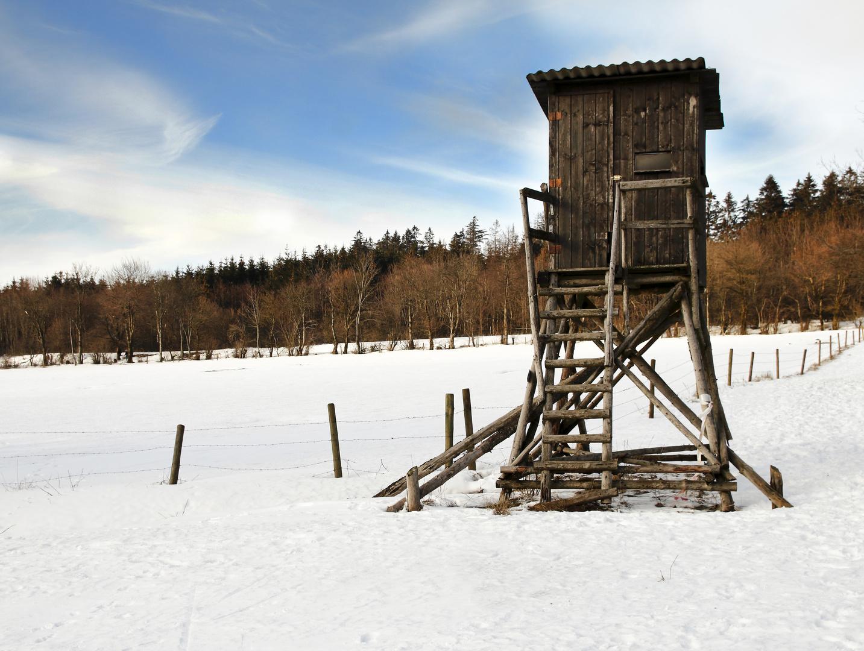 Winterspaziergang auf dem Hoherodskopf