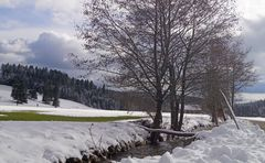 Winterspaziergang durchs Ibacher Tal