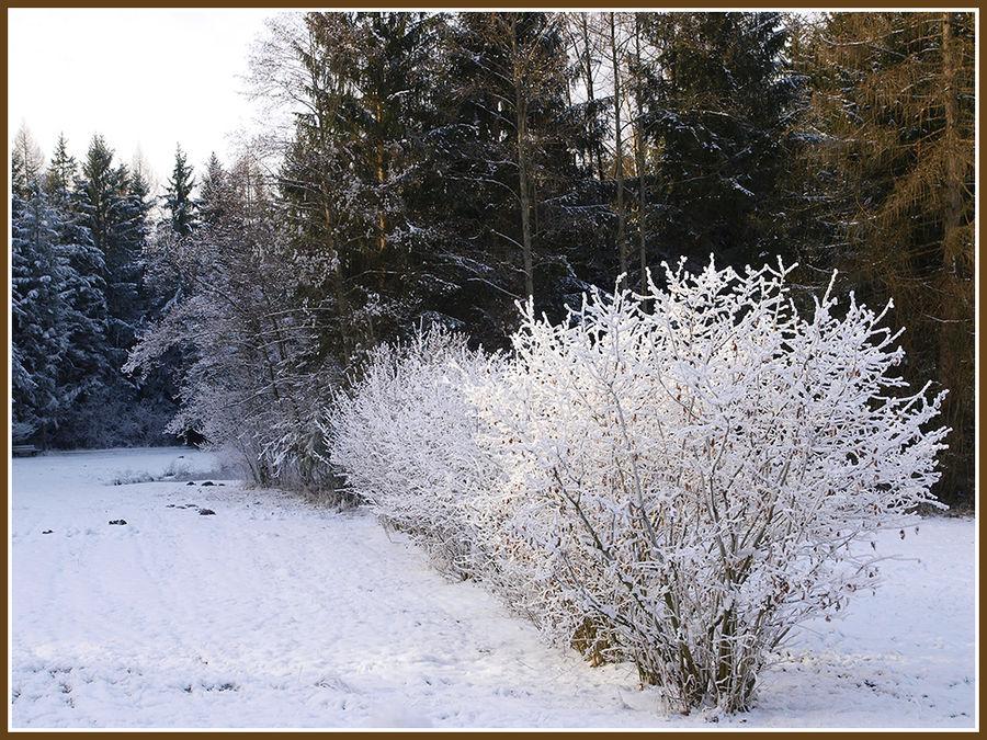 Winterspaziergang im Freilichtmuseum.