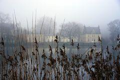 Winterspaziergang  im Park Babelsberg