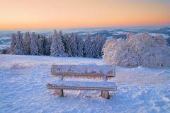 Winterstarre....