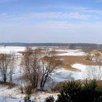 Winterstarre im Odertal
