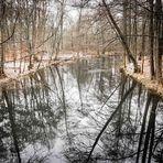 Winterstimmung an der Löcknitz