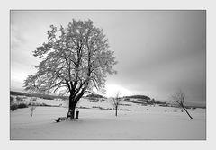 Winterstimmung auf der Alb