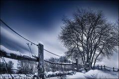 ~ Winterstimmung ~