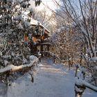 Winterstimmung im Zoo Leipzig