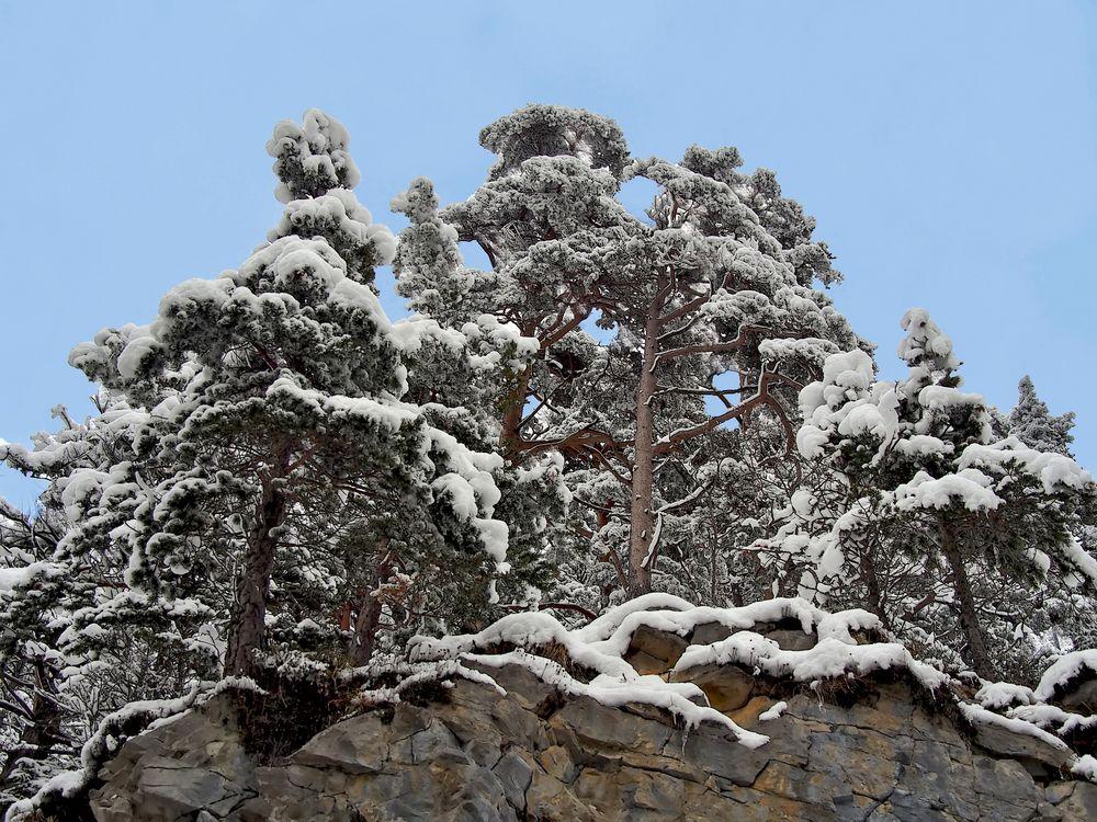 Winterstimmung in den Bergen - L'hiver à la montagne.