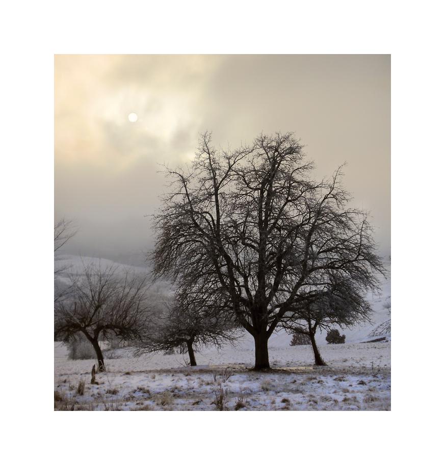 Wintersun breaking through
