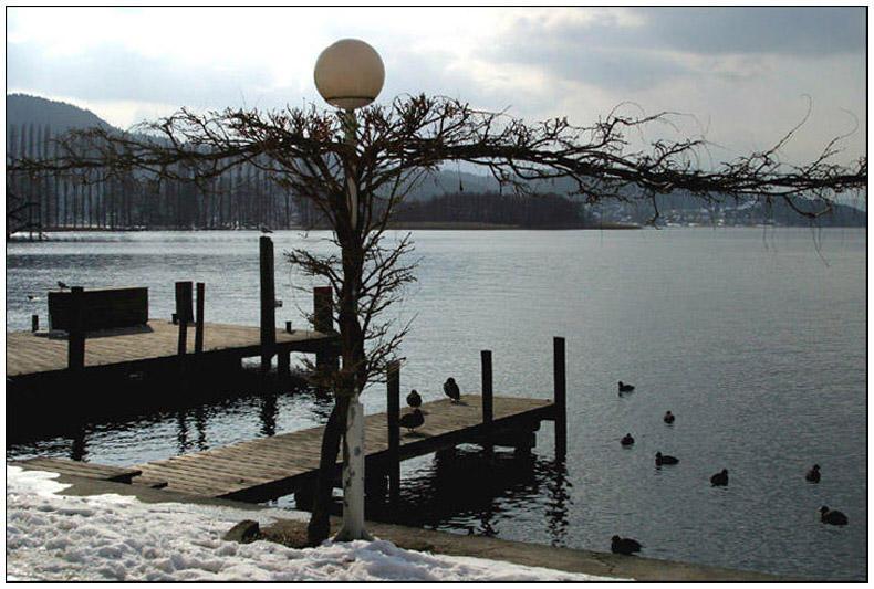 Wintertag am Wörthersee