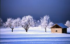 Wintertag
