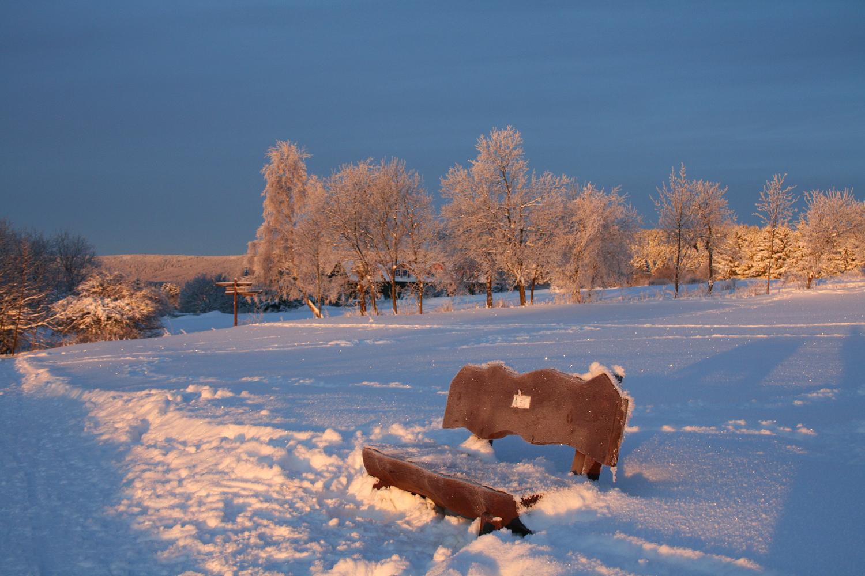 Wintertage im Harz (3)