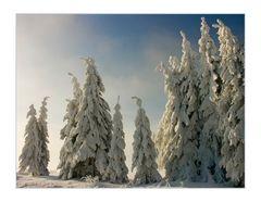 """...wintertime... - oder: Aufmarsch der lustigen """"Fichtelmänner""""..."""