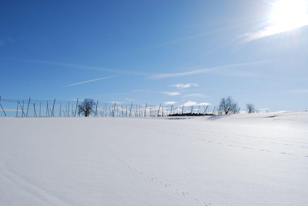 Wintertour 1