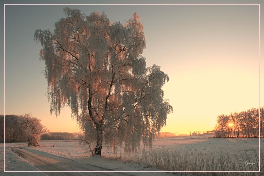 *** Wintertraum-3***
