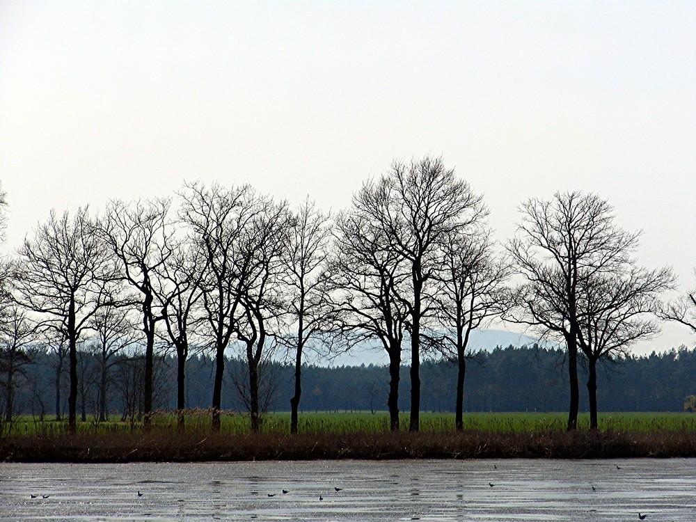 Wintertristesse