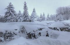 Wintervorräte_100119