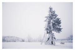*Winterwald #1