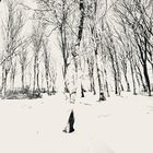 Winterwald 2