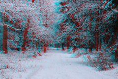 Winterwald.....