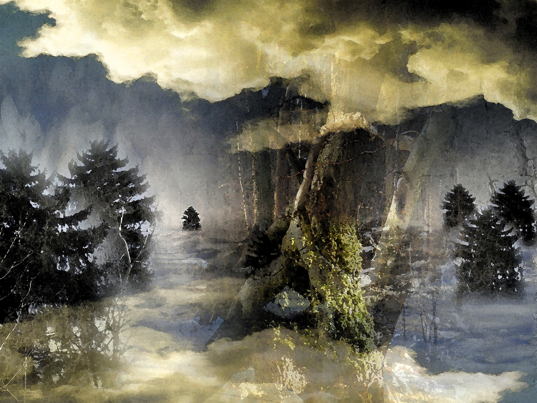 Winterwald wie gemalt