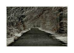 winterwaldstrasse