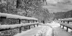 Winterwanderung im Hinterlangenbach-Tal