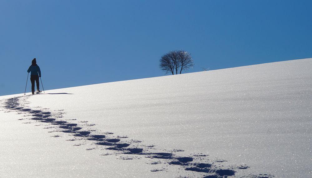Winterwanderung im Hotzenwald