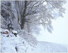 """""""winterweg"""""""