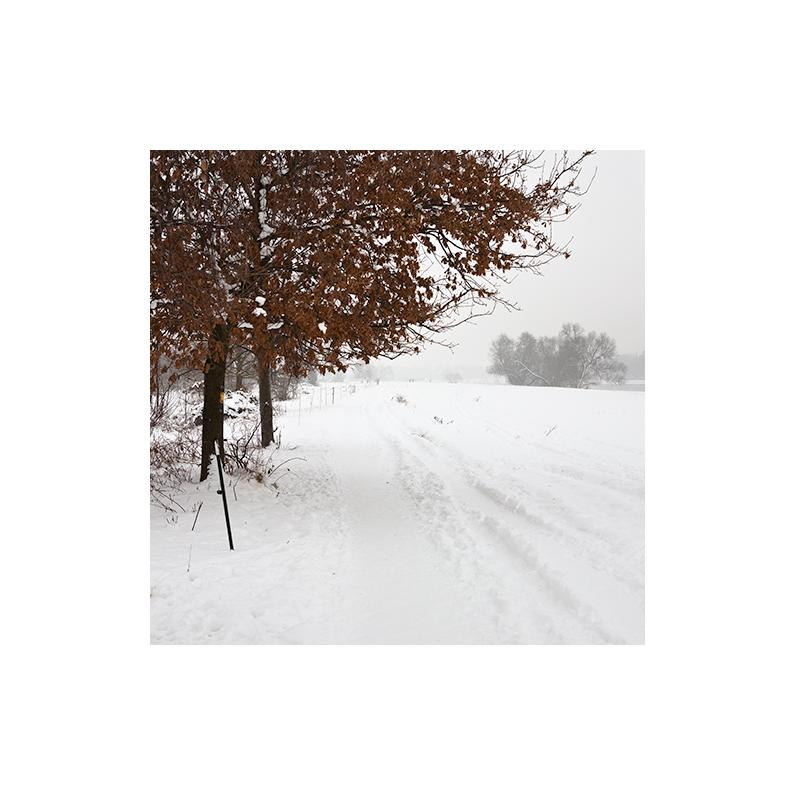 [ Winterweg ]