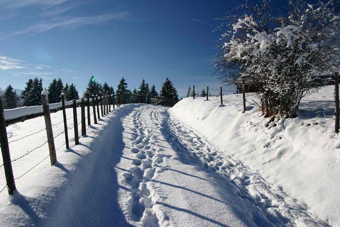Winterweg in Aleuthen