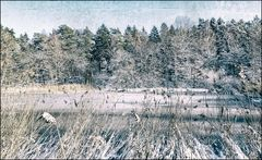 Winterwelt #3