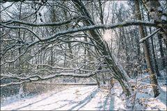Winterwelt #5