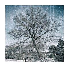 Winterwelt #7