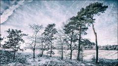 Winterwelt #9