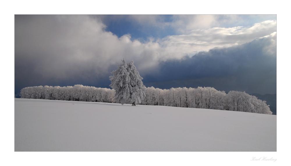 Winterwelt..