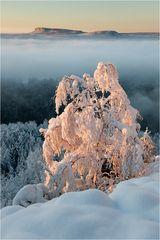 Winterwelt mit Zschirnstein
