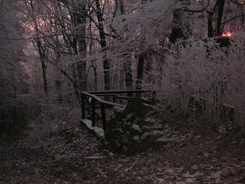 Winterwelt während eines Sonnenuntergangs