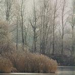 Winterwelten