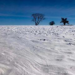 Winterwindformen