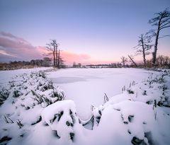 Winter:Wonder