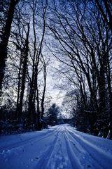 Winterwonderland Langwaden # 6
