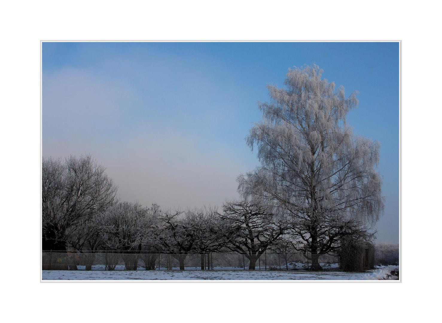 Winterwonderland VI