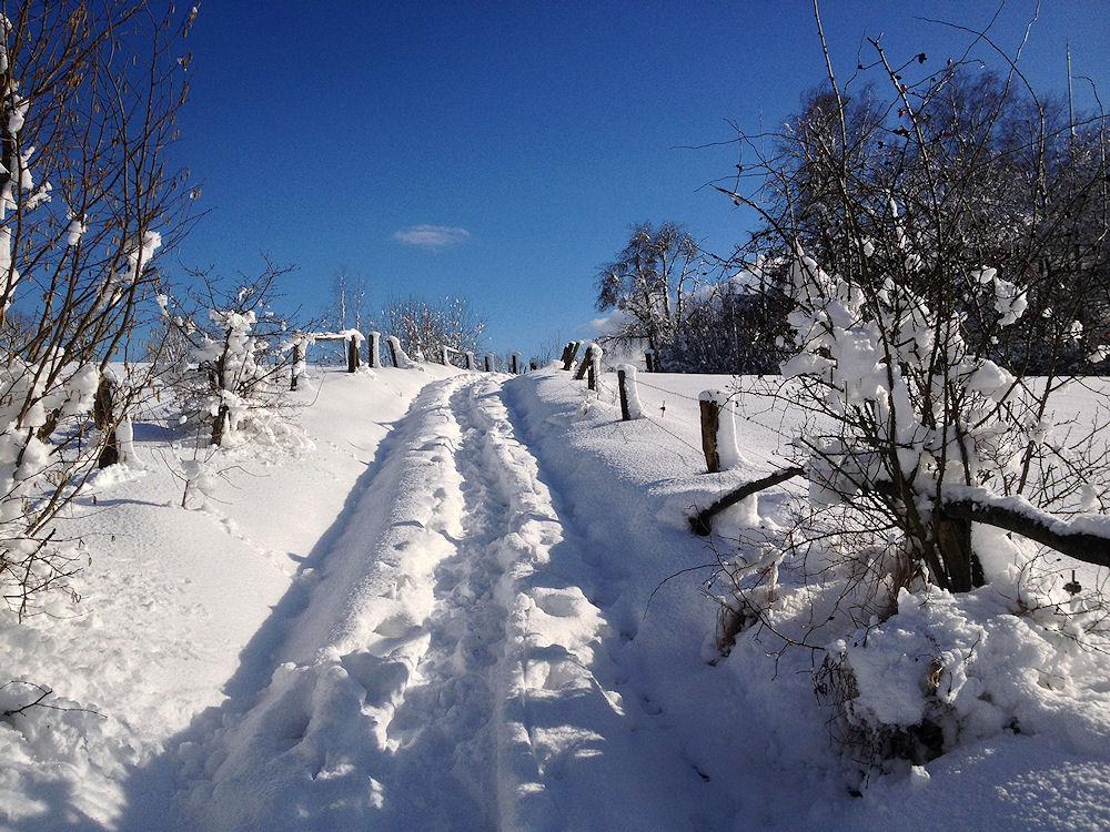 winter.wonder.land...II